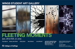 Fleeting Moments Gallery Poster