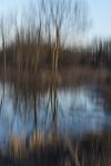 Winter River Reflections by Becky Jane Davis