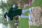 Chappy Mascot 2013 04