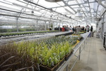 Technical Education Center - Greenhouse_01