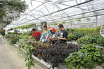 Technical Education Center - Greenhouse_02