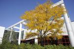Fall 2011_03