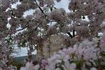 Spring 2013 _23