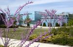 Spring 2012_07