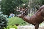 Waterfall Deer 06
