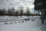 Winter 2015_14